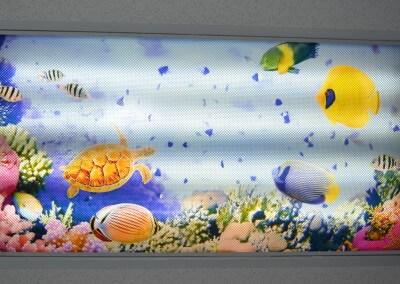 Fish light cover